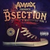 Icon The B-Section (Compilation)