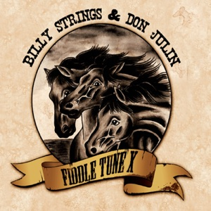 Billy Strings & Don Julin - Salt Creek - Old Joe Clark