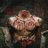 Download Obituary - Visions in My Head