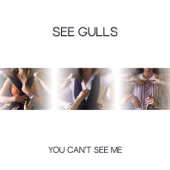 See Gulls - You Can't See Me