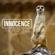 Innocence - The Response