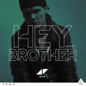 Download Avicii - Hey Brother (Extended Version)