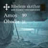 KABB - Amos / Obadja (Bibel2011 - Bibelens skrifter 30 / 31 - Det Gamle Testamentet) artwork