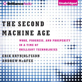 The Second Machine Age: Work, Progress, And Prosperity in a Time of Brilliant Technologies (Unabridged) audiobook