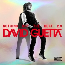 Nothing But the Beat 2 0