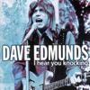 Dave Edmunds - I Hear You Knocking Grafik