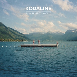 In a Perfect World Mp3 Download