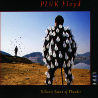 Pink Floyd - Delicate Sound of Thunder (Live) artwork