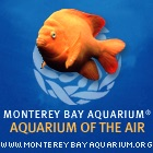 "Monterey Bay Aquarium's ""Aquarium of the Air"""