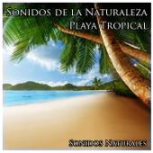 Sonidos de la Naturaleza: Playa Tropical