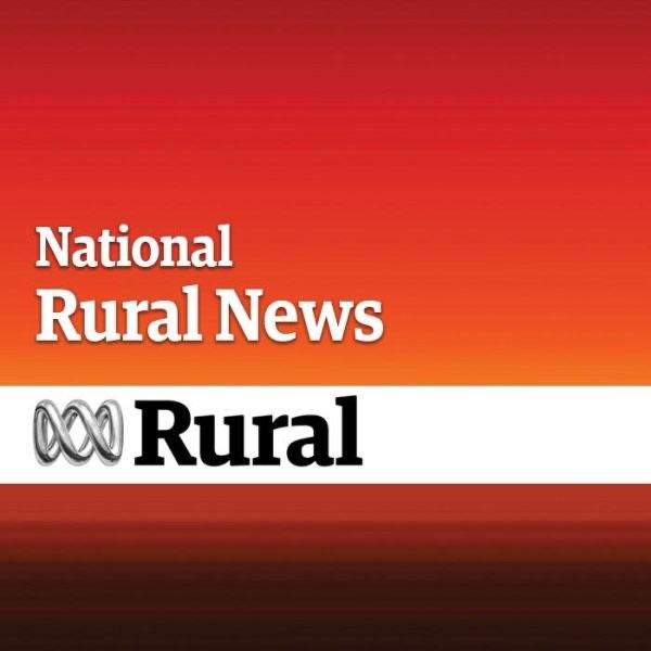 National Rural News