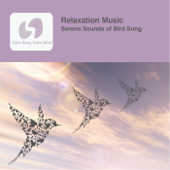 Relaxation Music (Serene Sounds of Bird Song)