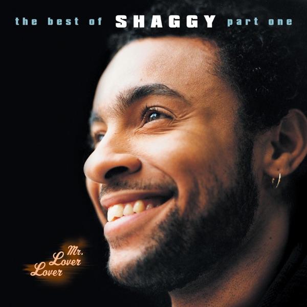 Shaggy - Luv Me