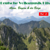 Various Artists - Deutsche Volksmusik Hits - Alpen, Bayern & die Berge, Vol. 3 artwork