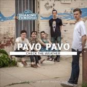 Pavo Pavo - Check the Weather