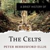 A Brief History of the Celts: Brief Histories (Unabridged) - Peter Berresford Ellis