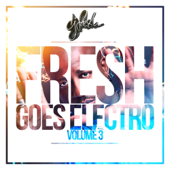 Fresh Goes Electro, Vol. 3