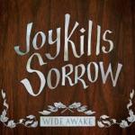 Joy Kills Sorrow - Jake