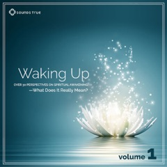 Waking Up: Volume 1: Over 30 Perspectives on Spiritual Awakening - What Does It Really Mean? Volume 1