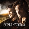 Supernatural, Season 10 wiki, synopsis
