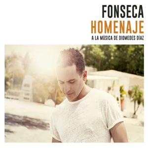 Homenaje (A la Música de Diomedes Díaz) Mp3 Download