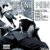 Beenie Man - Girls Dem Sugar (feat. Mya)