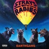 EARTHGANG - Strays with Rabies Album