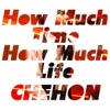 How Much Time How Much Life - Single ジャケット写真