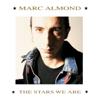 Something's Gotten Hold of My Heart - Marc Almond & Gene Pitney