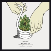 Kris Davis Trio - Whirly Swirly