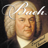 Bach: Essential Classic