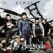 C.I.N.T.A-D'Bagindas
