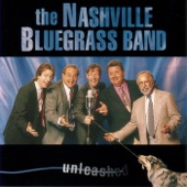 The Nashville Bluegrass Band - Dark Shadows of Night
