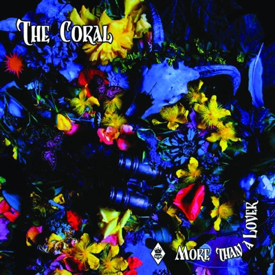 More Than a Lover - Single - The Coral
