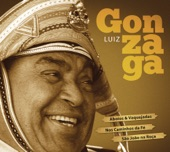 LUIZ GONZAGA -  VIDA DE VAQUEIRO
