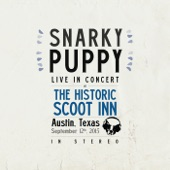 Snarky Puppy - What About Me?
