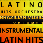 Brazilian Music, Vol. 1 (Instrumental Karaoke Tracks)