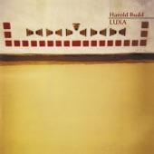 Harold Budd - Inexact Shadows: Djinn/Porphyry/How Dark the Response to Our Slipping Away