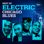Best of Electric Chicago Blues