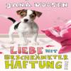 Jana Voosen - Liebe mit beschränkter Haftung artwork