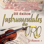 22 Exitos - Instrumentales De Oro, Vol. 1