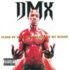 DMX - Slippin' artwork