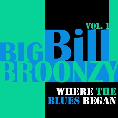 Where the Blues Began, Vol. 1 - Big Bill Broonzy