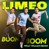 Boom Boom (Willy William Remix) - Single