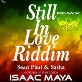 Still In Love (Isaac Maya Remix) - Single