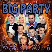 Big Party Manele, Vol. 6