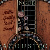 Nitty Gritty Dirt Band - One Sure Honest Line