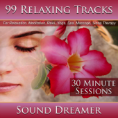 99 Relaxing Tracks (30 Minute Sessions) [For Relaxation, Meditation, Reiki, Yoga, Spa, Massage and Sleep Therapy]