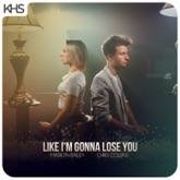 Like I'm Gonna Lose You - Single