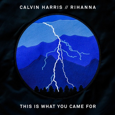 This Is What You Came For (feat. Rihanna) - Calvin Harris song